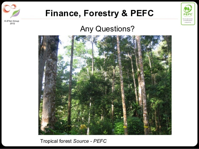 Finance, Forestry & PEFC           PEFC/01-00-01                                                  Promoting Sustainable   ...