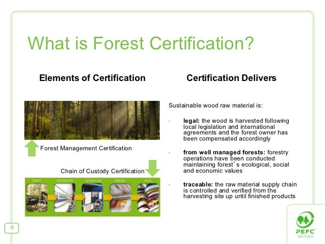 What is Forest Certification?     Elements of Certification                    Certification Delivers                     ...
