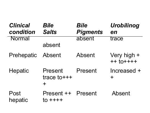 Clinical condition Normal Bile Salts absent Bile Pigments absent Urobilinog en trace Prehepatic Absent Absent Very high + ...
