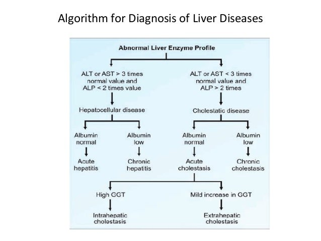 Liver diagram test electrical work wiring diagram liver function test rh slideshare net liver anatomy diagram liver cell diagram ccuart Image collections