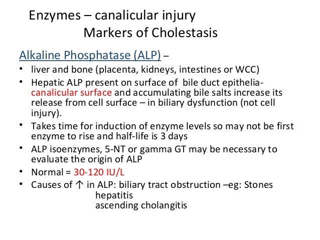 Enzymes – canalicular injury Markers of Cholestasis Alkaline Phosphatase (ALP) – • liver and bone (placenta, kidneys, inte...