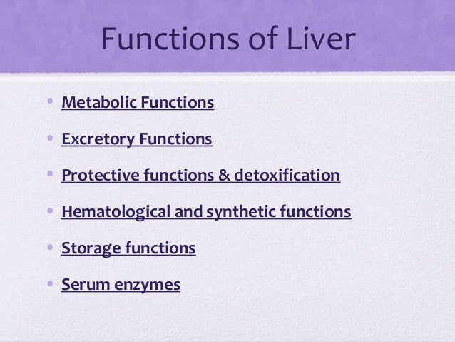 liver function tests, Human Body
