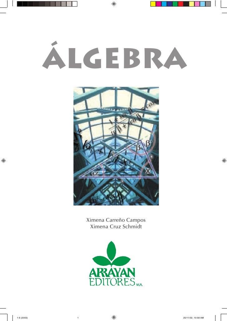 libro algebra de arrayan