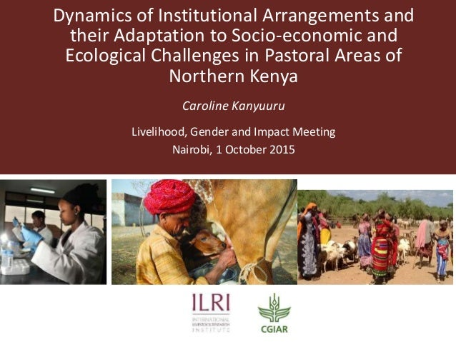 Dynamics of Institutional Arrangements and their Adaptation to Socio-economic and Ecological Challenges in Pastoral Areas ...
