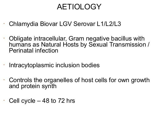 AETIOLOGY •  Chlamydia Biovar LGV Serovar L1/L2/L3  •  Obligate intracellular, Gram negative bacillus with humans as Natur...