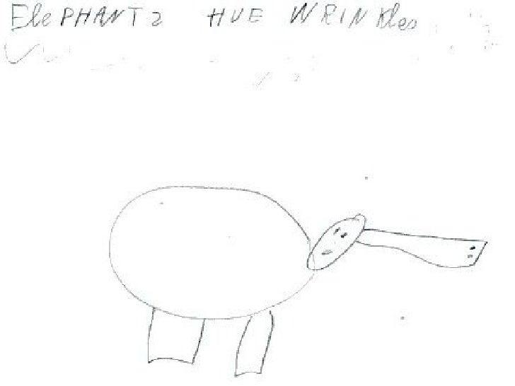 Lh2 a elephants have wrinkles Slide 3
