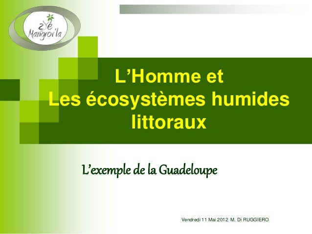 L'Homme et Les écosystèmes humides littoraux L'exemple de la Guadeloupe Vendredi 11 Mai 2012 M. Di RUGGIERO