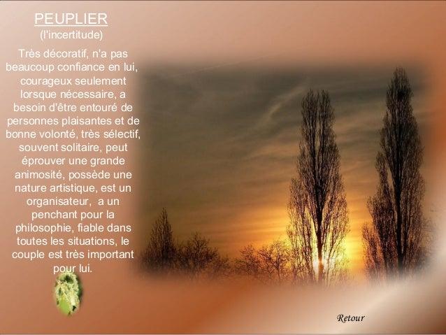 PEUPLIER       (lincertitude)   Très décoratif, na pasbeaucoup confiance en lui,   courageux seulement   lorsque nécessair...