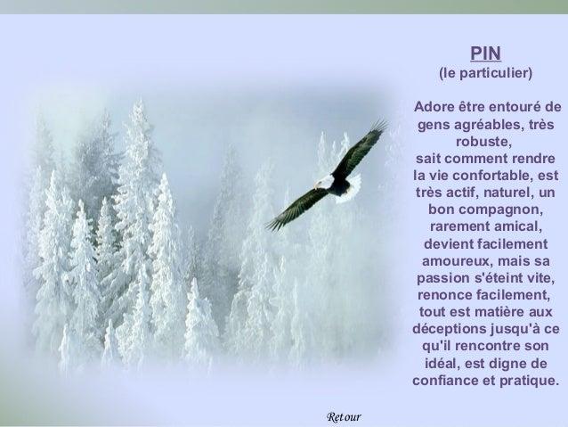 PIN             (le particulier)         Adore être entouré de          gens agréables, très                  robuste,    ...