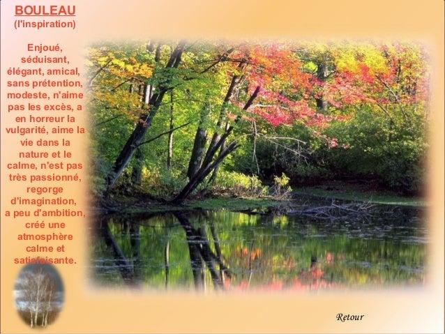 BOULEAU  (linspiration)      Enjoué,    séduisant,élégant, amical,sans prétention,modeste, naime pas les excès, a   en hor...