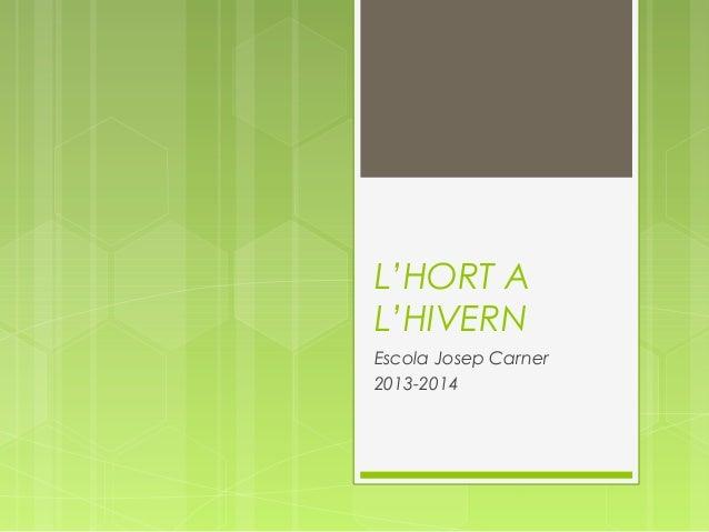 L'HORT A L'HIVERN Escola Josep Carner 2013-2014
