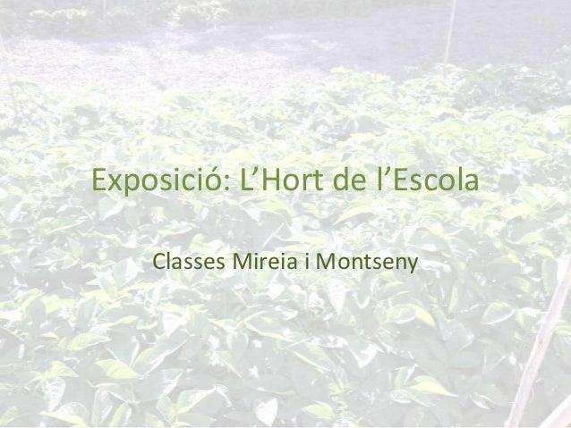 Exposició: L'Hort de l'EscolaClasses Mireia i Montseny