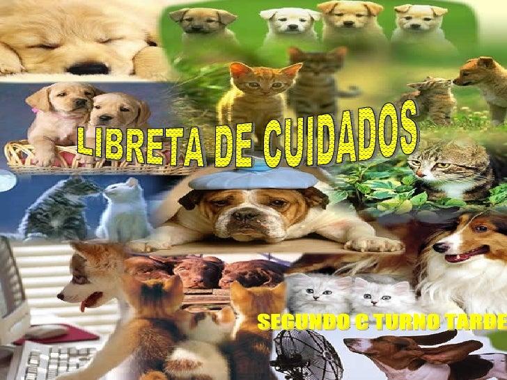 LIBRETA DE CUIDADOS SEGUNDO C TURNO TARDE