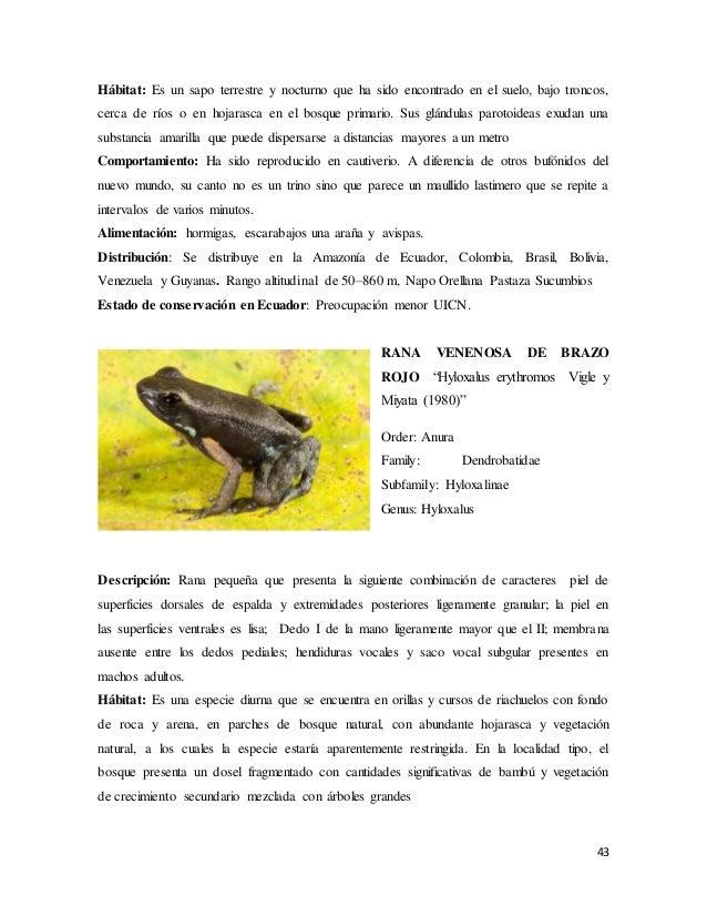 Libro anfibios-zoologia