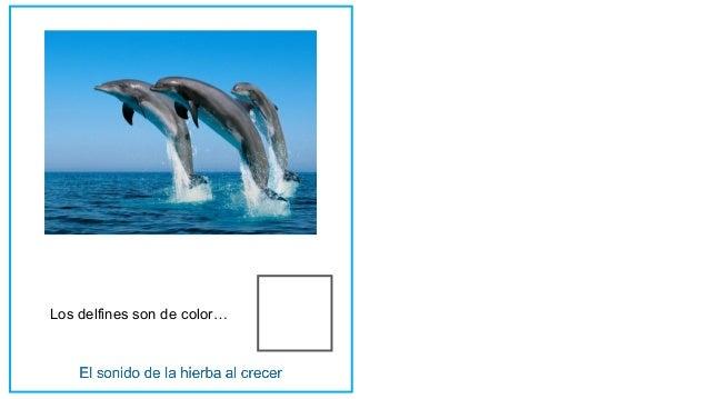 Los delfines son de color…
