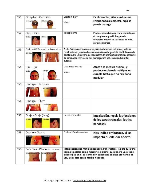 63 151 Occipital – Occipital Eipstein barr Virus Es el carácter, si hay un trauma relacionado al carácter, aquí se puede c...