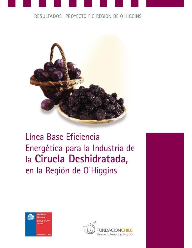 RESULTADOS: PROyEcTO FIc REgIón DE O´HIggInSLínea Base EficienciaEnergética para la Industria dela Ciruela Deshidratada,en...
