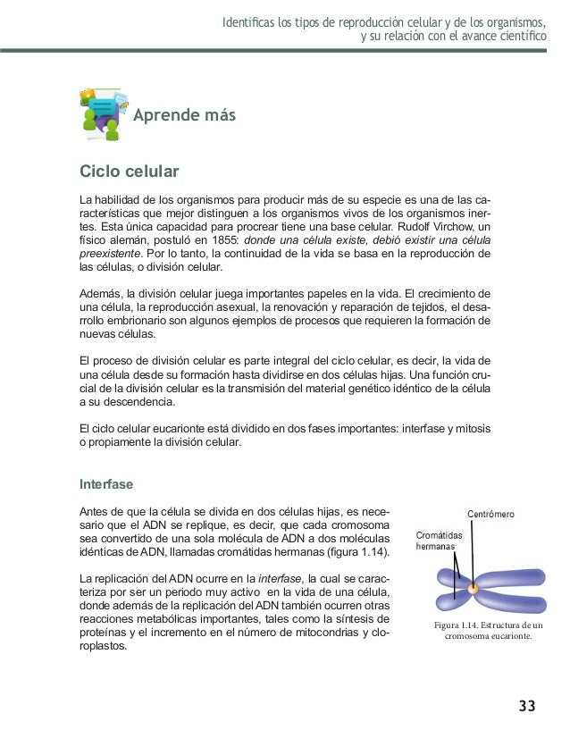 Libro de Biologia II