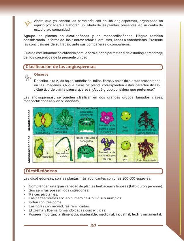 Libro de ciencias naturales 9no grado