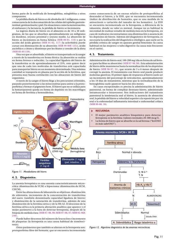 Libro de hematologia