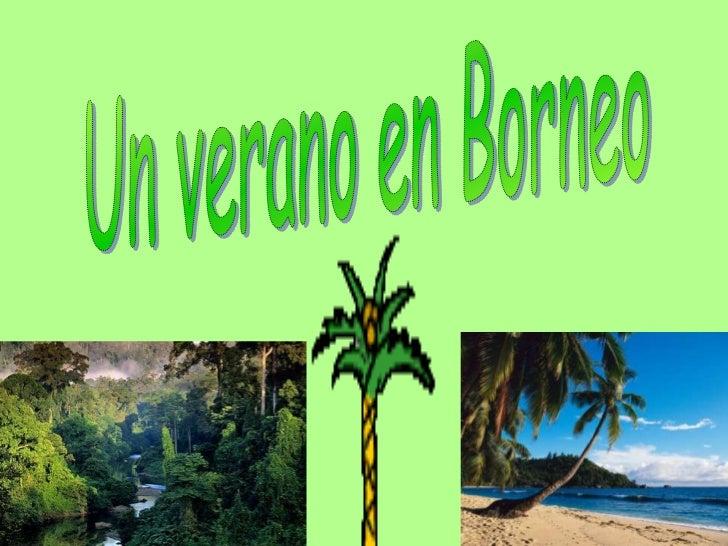 Un verano en Borneo<br />