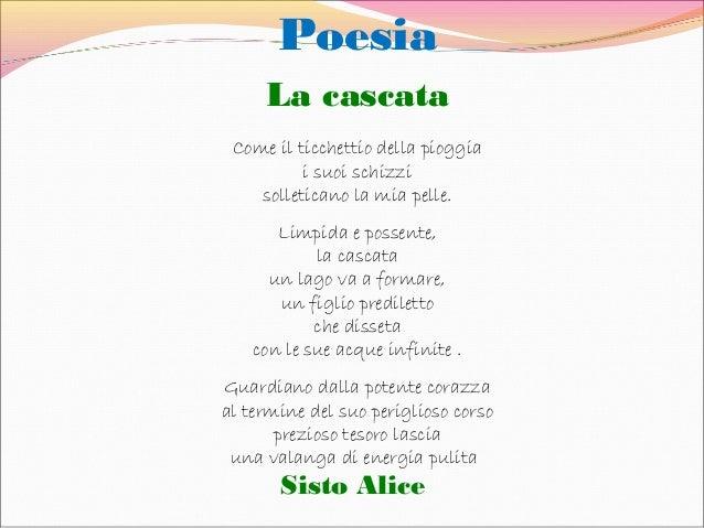 Libro Disegni E Poesie Descriver Poetando