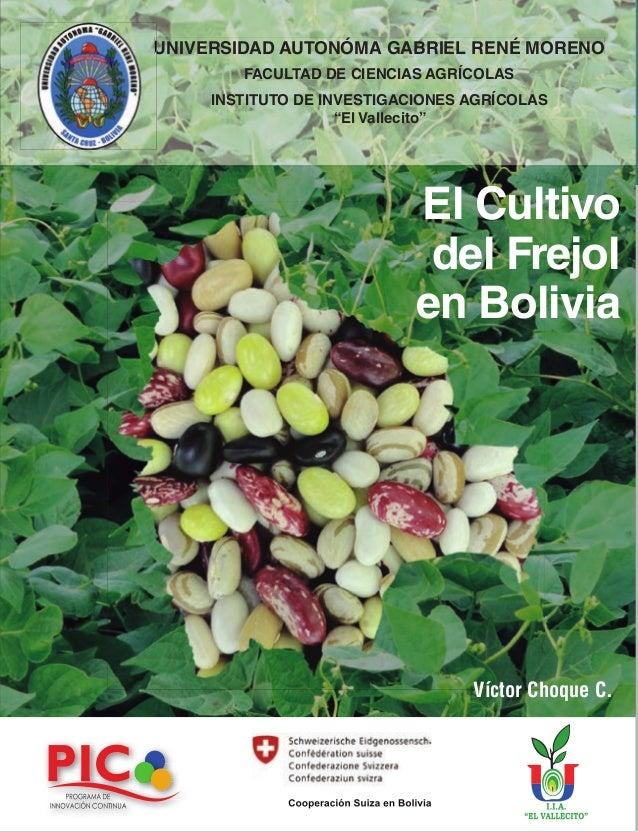 El Cultivo del Frejol en Bolivia Víctor Choque C. Cooperación Suiza en Bolivia UNIVERSIDAD AUTONÓMA GABRIEL RENÉ MORENO FA...