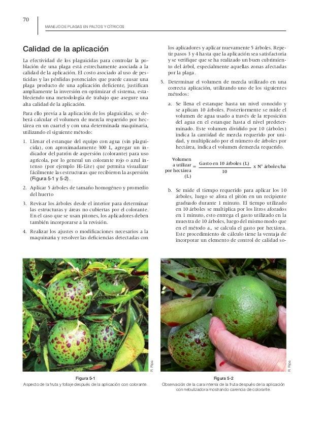 Manejo de plagas en paltos y citricos - Ripa y Larral