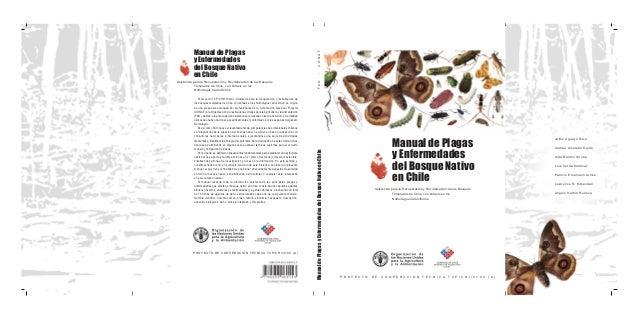 Manual de Plagas y Enfermedades del Bosque Nativo en Chile Asistencia para la Recuperación y Revitalización de los Bosques...