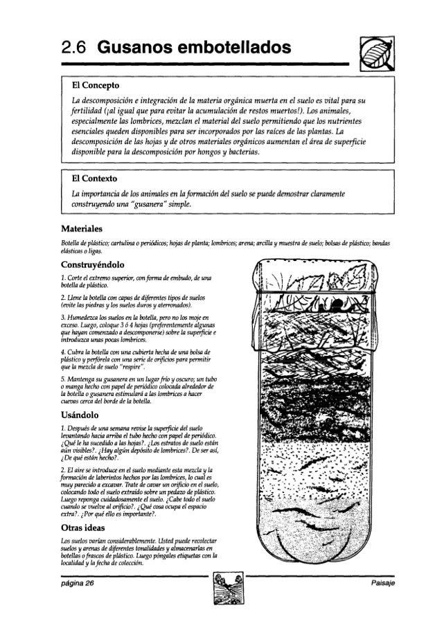 2.6 Gusanos embotellados El Concepto La descomposición e integración de la materia orgánica muerta en el suelo esvital par...