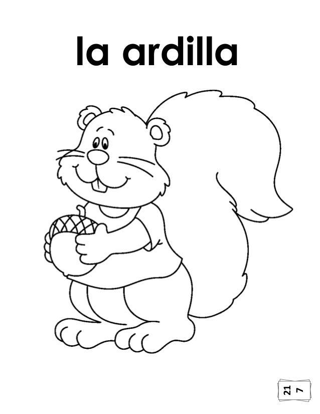 Ardilla Bebe Para Colorear - tongawale.com