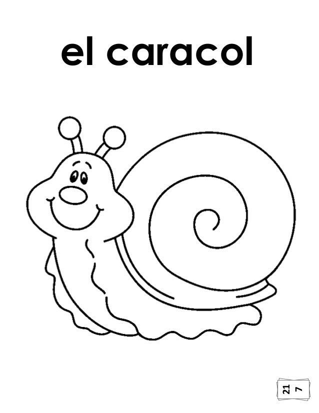 Encantador Caracol Para Colorear Imprimible Ilustración - Páginas ...