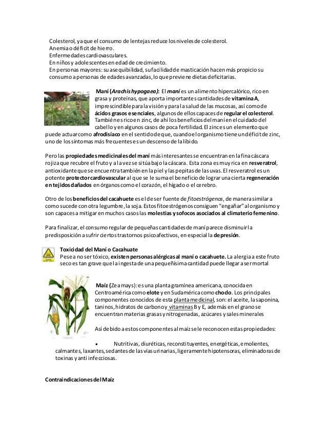 Libro plantas anatomia y fisiología vegetal