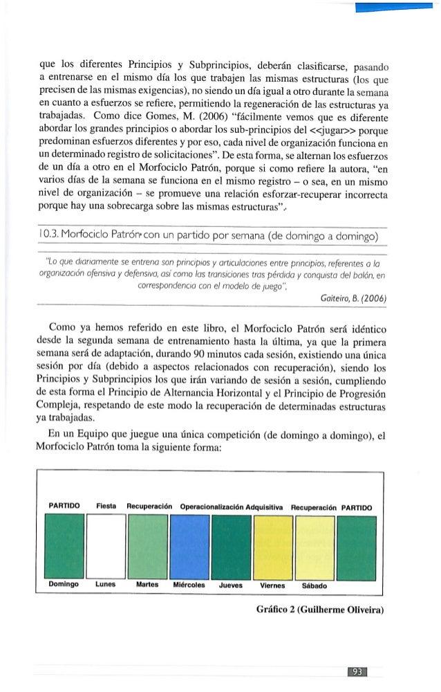 Libro ¿que es la periodizacion tactica