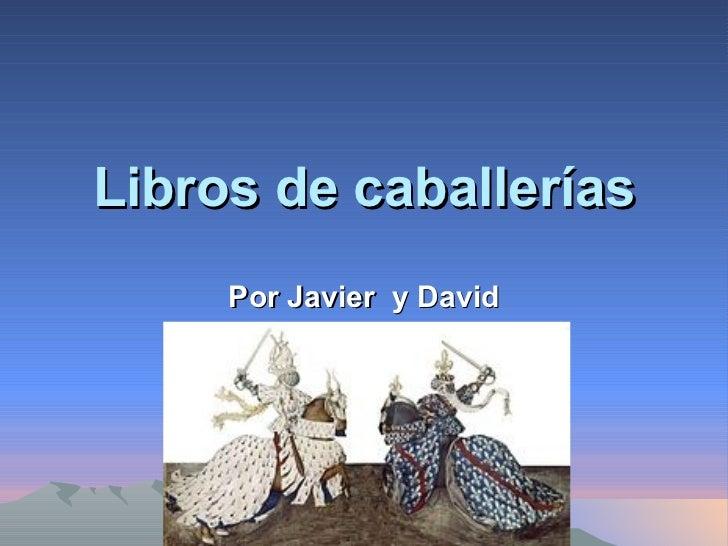 Libros de caballerías Por Javier  y David