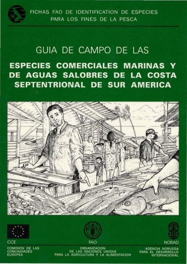 ESPECIES LOS PESCA I I preparado por: F. Cervig6n. R. Cipriani, W. Fischer, L. Garibaldi, M. Hendrickx, A.J. Lemus, R. Mar...