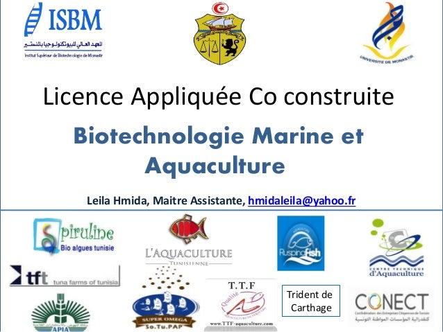 /مم Licence Appliquée Co construite Biotechnologie Marine et Aquaculture Trident de Carthage Leila Hmida, Maitre Assista...