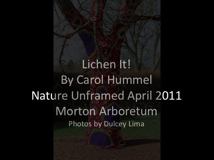 Lichen It! By Carol Hummel  Nature Unframed April 2011Morton ArboretumPhotos by Dulcey Lima<br />