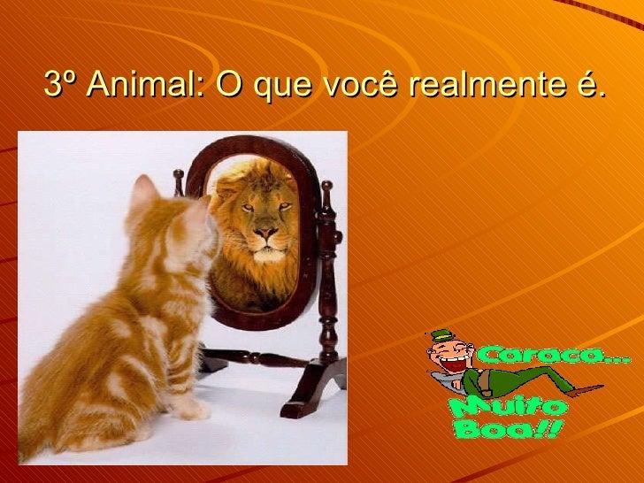 3º Animal: O que você realmente é.