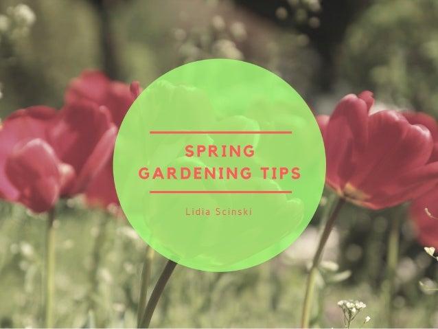 Lidia Scinski - Spring Gardening Tips
