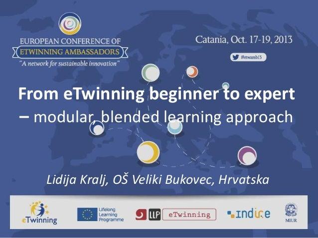 From eTwinning beginner to expert – modular, blended learning approach Lidija Kralj, OŠ Veliki Bukovec, Hrvatska