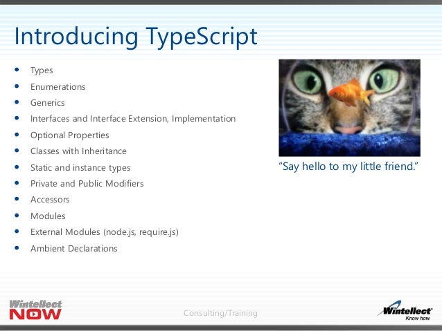 Consulting/Training  Types  Enumerations  Generics  Interfaces and Interface Extension, Implementation  Optional Prop...