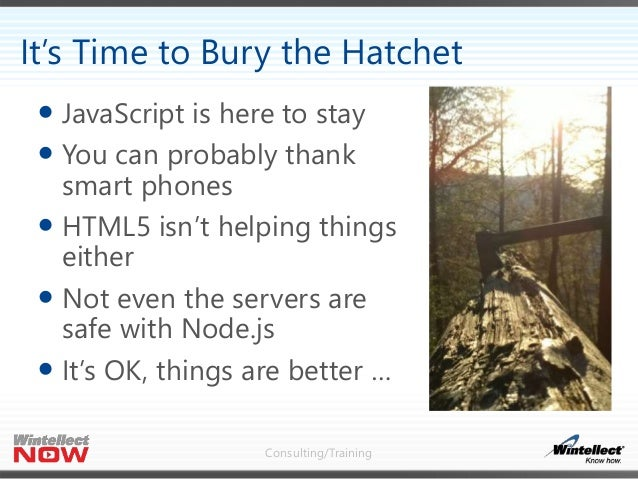 Consulting/Training  JavaScript is here to stay  You can probably thank smart phones  HTML5 isn't helping things either...