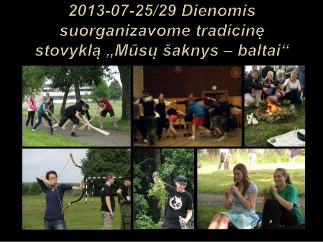 Lietuvių tautinio jaunimo sąjungos 2013 2014 metų veiklos ataskaita foto
