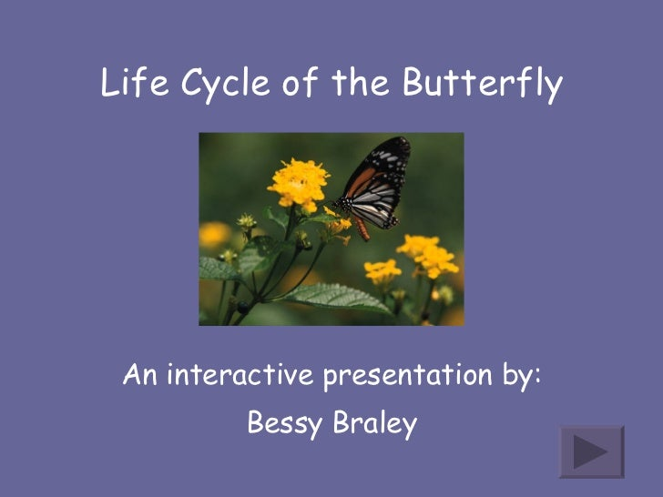 Life Cycle of the Butterfly An interactive presentation by: Bessy Braley