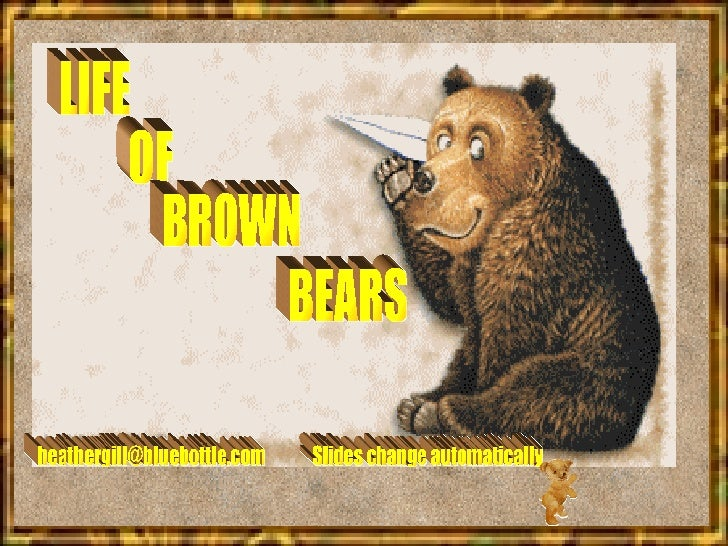 LIFE OF BROWN BEARS [email_address] Slides change automatically