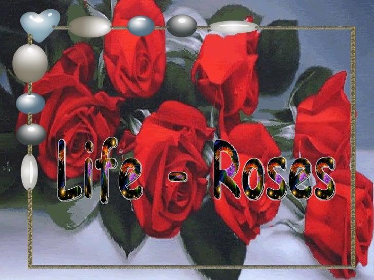 Life - Roses