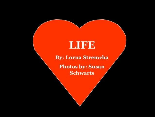 LIFEBy: Lorna Stremcha Photos by: Susan    Schwarts