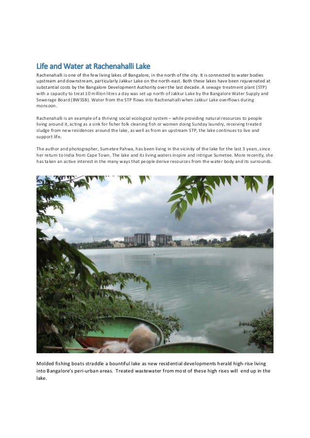 Life and Water at Rachenahalli Lake  Rachenahalli is one of the few living lakes of Bangalore, in the north of the city. I...