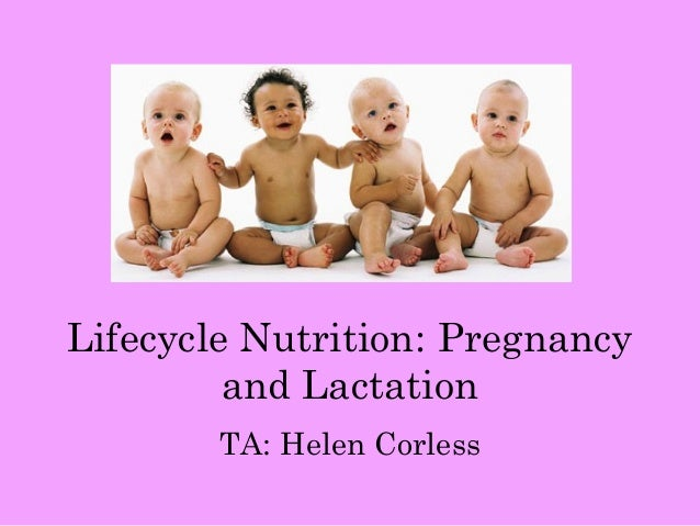 Lifecycle Nutrition: Pregnancy         and Lactation        TA: Helen Corless